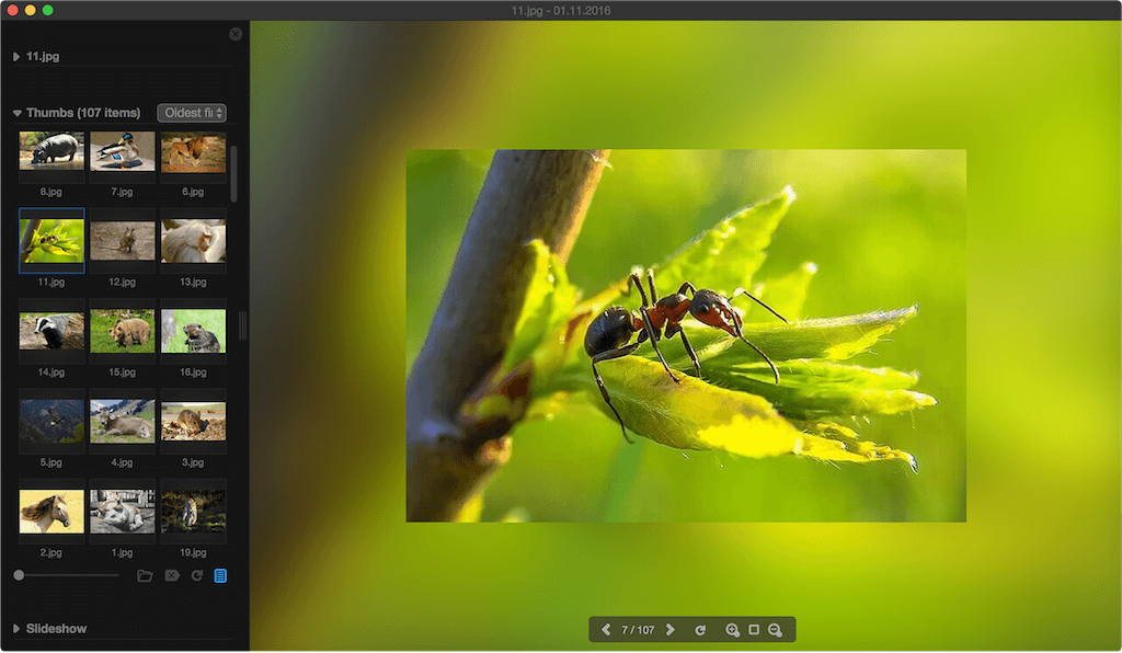 Mac os image viewer